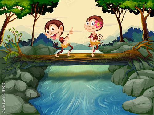 Canvas Prints River, lake Two monkeys dancing while crossing the river