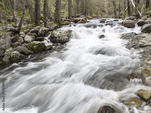 Fotografía  río de montaña en plena primavera