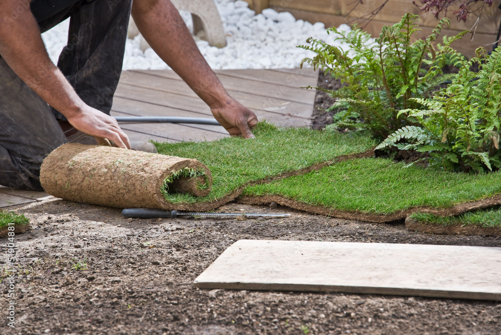 Fototapety, obrazy: Pose de pelouse en rouleaux