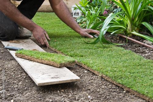 Fotografía  Pose de pelouse en placa