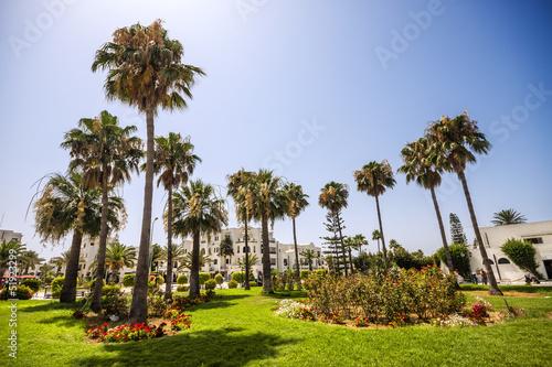Tropical garden in Port El Kantaoui, Tunisia
