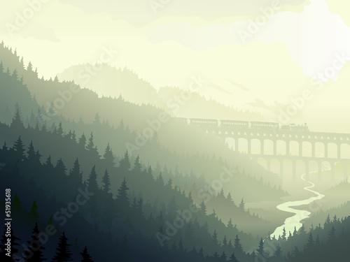 Cuadros en Lienzo Steam train in wild coniferous wood in morning fog.
