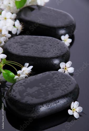 zdrojow-kamienie-i-biali-kwiaty-na-ciemnym-tle