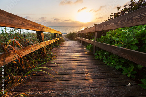 Poster Marron chocolat Boardwalk on beach