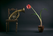 Old Chair, A Trombone And A Re...