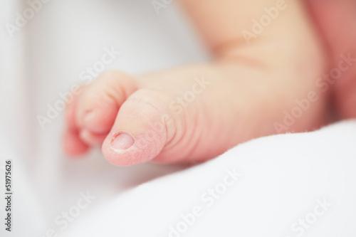 Fototapety, obrazy: Newborn