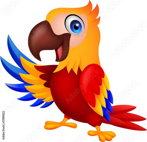sliczny-ary-kreskowki-ptasi-falowanie