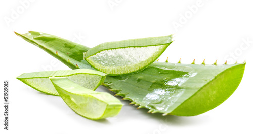 Fotografiet cut aloe leaves on white background