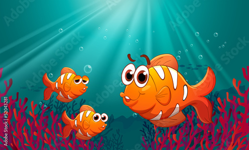 Spoed Fotobehang Onderzeeer Three fishes under the sea with corals