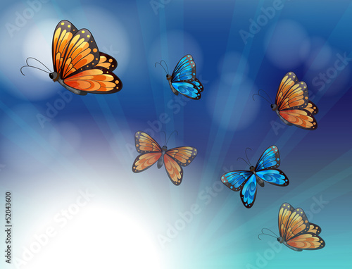 Fotobehang Vlinders Colorful butterflies in a gradient colored stationery