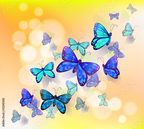 Keuken foto achterwand Vlinders A wallpaper design with butterflies