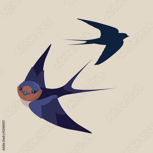 little swallow bird vector illustration - Buy this stock