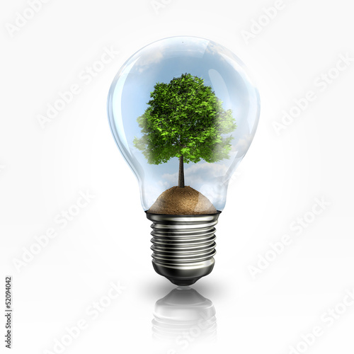 Photographie  A light bulb with a tree inside