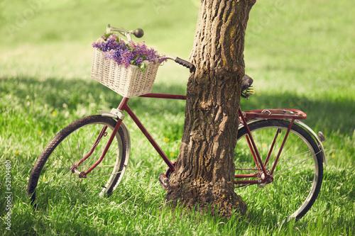 Türaufkleber Fahrrad Vintage bicycle waiting near tree
