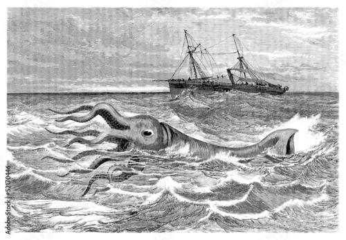 Fotografie, Obraz  Giant Calamari - Calmar Géant