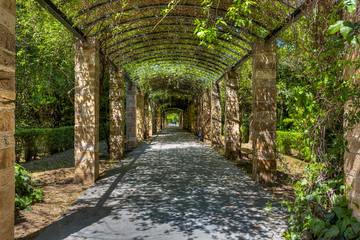 Fototapeta The National Garden of Athens in Greece