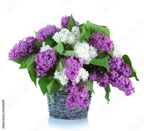 Fotobehang Lilac Beautiful lilac flowers in wicker vase, isolated on white