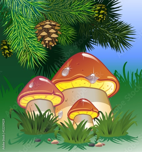 Printed kitchen splashbacks Magic world Mushroom