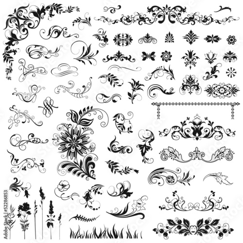 Set of decorative  floral elements. Wall mural