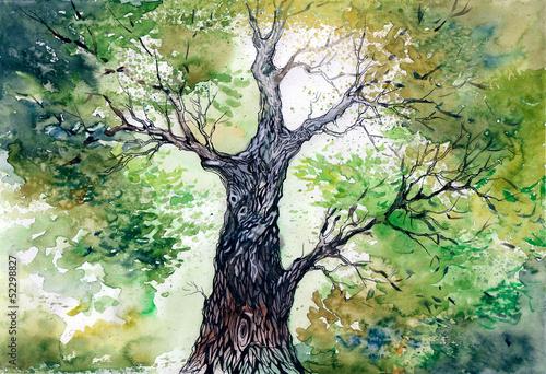 zielone-drzewo
