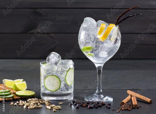 Obraz na plátně Gin tonic cocktail with lima cucumber vanilla cloves cardamom
