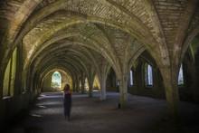 Fountains Abbey  Cellarium Ghost