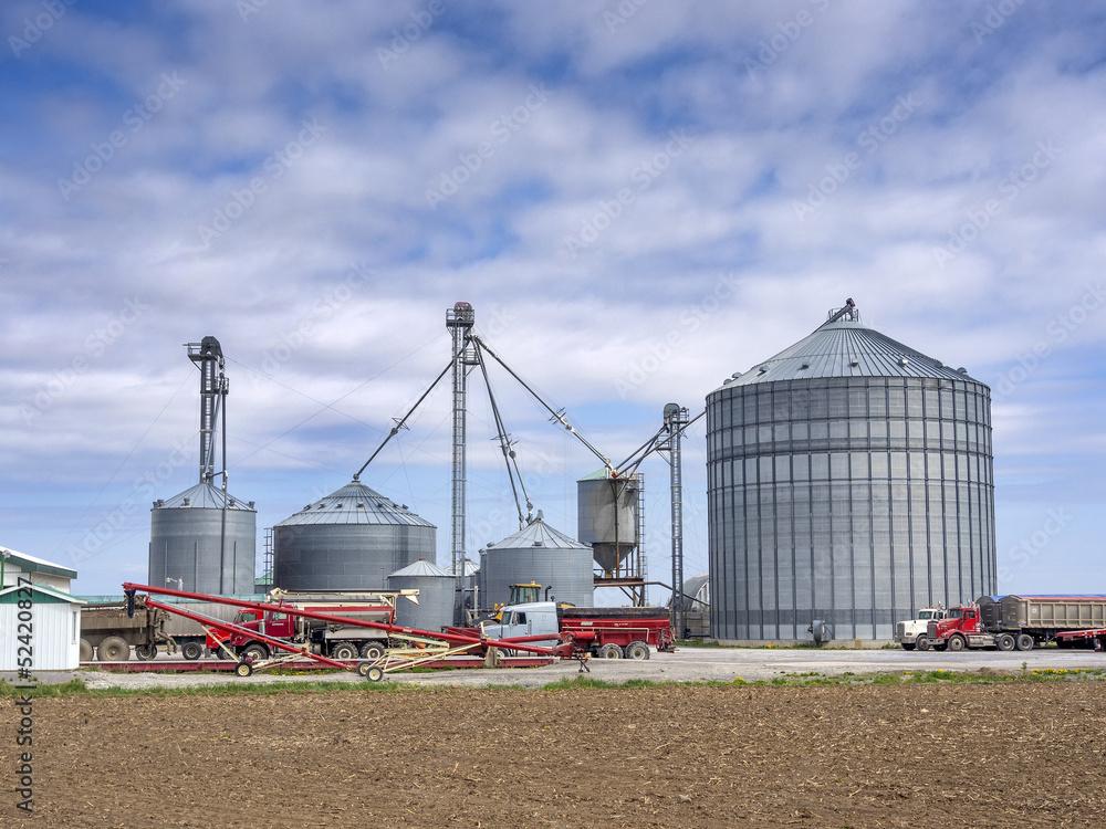 Fototapety, obrazy: Grain silos on the farm