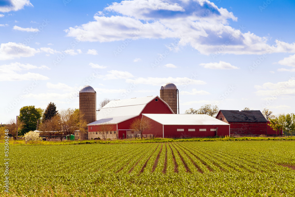 Fototapeta Traditional American Farm
