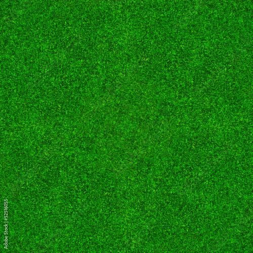 Zielona trawa tło - fototapety na wymiar