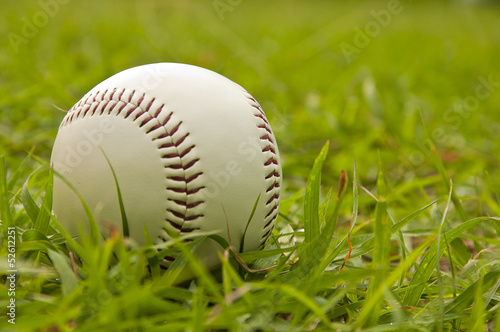 Papiers peints Azalea white baseball on green grass