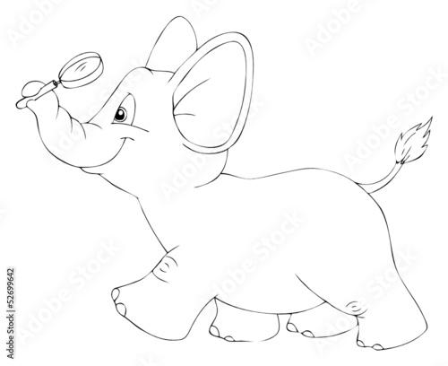Tuinposter Elefant, Lupe