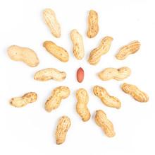 A Pile Of Shelled Big Peanuts ...