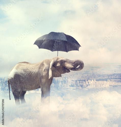 slon-cieszy-sie-deszczu-avobe-miasto-na-chmurach