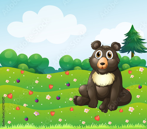 Canvas Prints Bears A brown bear sitting in the garden