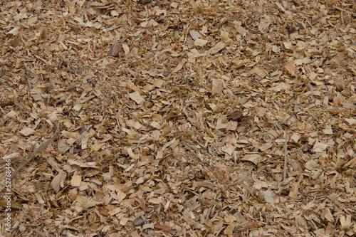 Fotografia, Obraz  Wood shavings (sawdust texture)