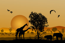 Silhouette Of Safari Animal Wi...