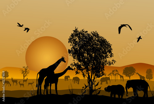 Canvas Prints Red Silhouette of safari animal wildlife