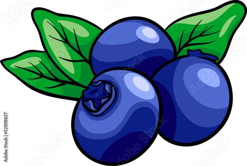 Fotografía blueberry fruits cartoon illustration
