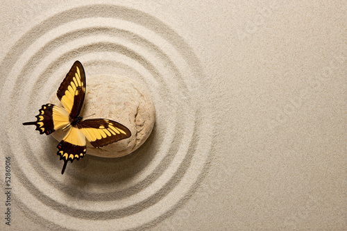 Acrylic Prints Stones in Sand Zen stone with butterfly