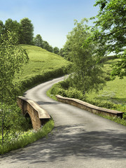 FototapetaDroga przez zielone łąki