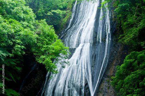 Fotografering  新緑の滝