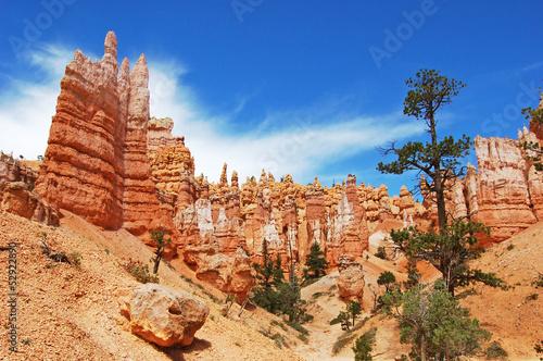 Carta da parati Bryce Canyon, USA