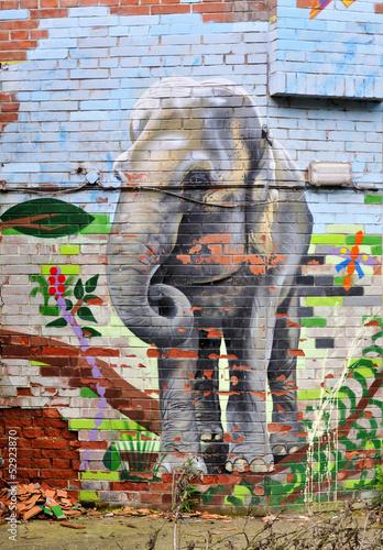 pomalowany-slon-na-scianie