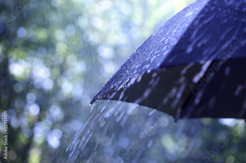 Fotografie, Obraz  Rain on umbrella