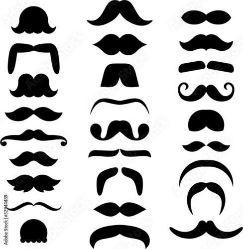 Cuadros en Lienzo Mustache icons
