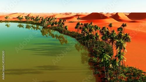 Obraz na płótnie Beautiful natural background - African oasis
