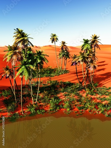 Beautiful Natural Background African Oasis Buy This Stock