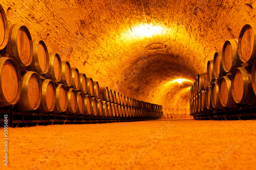 Antique Wine Cellar Canvas Print