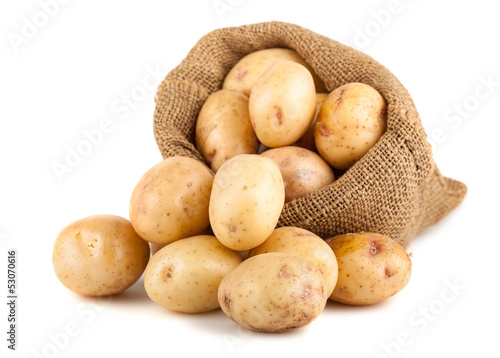 Ripe potatoes in a burlap bag Slika na platnu