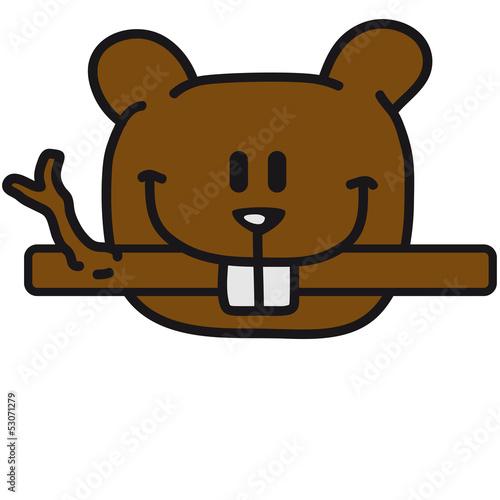 Photo  Beaver Eats Wood